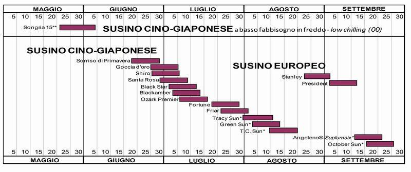 Nuova variet di susina songria 15 for Calendario concimazione agrumi