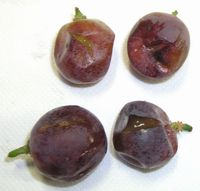 Rammollimento degli acini una subdola fitopatia dell 39 uva - Red globe uva da tavola ...