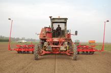Olanda adottato macchinario italiano per la semina delle for Semina cipolle