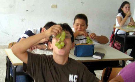 Mola di bari un bentornato sui banchi di scuola con l 39 uva - Calorie uva bianca da tavola ...