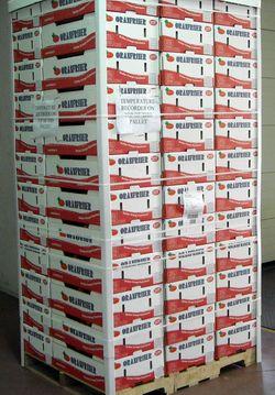 Oranfrizer invia in brasile il primo container di arance moro for Anticipo tfr seconda volta
