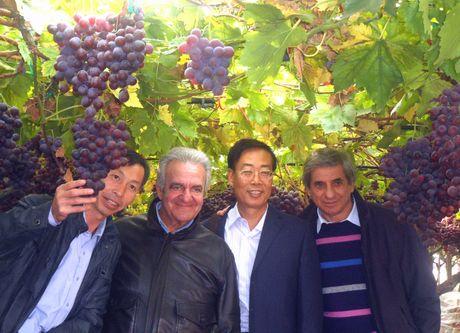 Puglia delegazione cinese in visita a noicattaro ba - Puglia in tavola bitetto ...