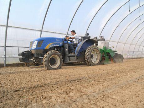 Pirodiserbo in orticoltura un letto di semina sano e disinfestato senza residui chimici - Letto di semina ...