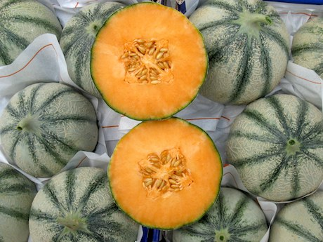 A pachino sapori di sicilia punta sul melone for Melone charentais