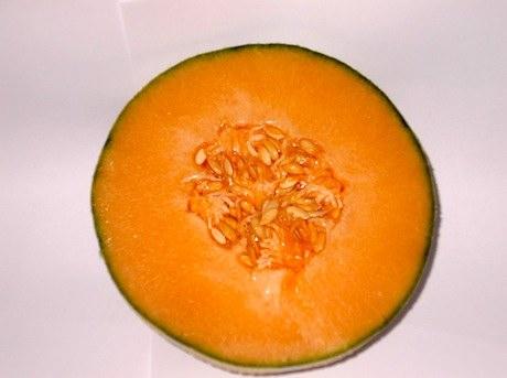 Sapori di sicilia ha gia 39 iniziato la raccolta del for Melone charentais