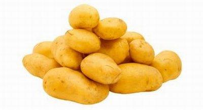 Biox m antigermogliante 100 naturale per la for Raccolta patate