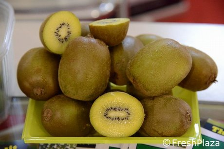 Vivai dal pane e summerfruit operanti nella rete europea for Nergi piante vendita