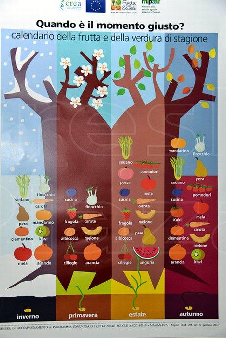 Frutta Nelle Scuole Calendario Distribuzione.La Stagionalita Dell Ortofrutta Italiana Secondo Frutta