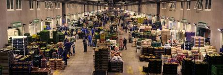 Centro agroalimentare di napoli un mercato all 39 ingrosso for Centro ingrosso arredamenti di firma