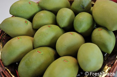 Italy: Mangoes imported by air are always more popular