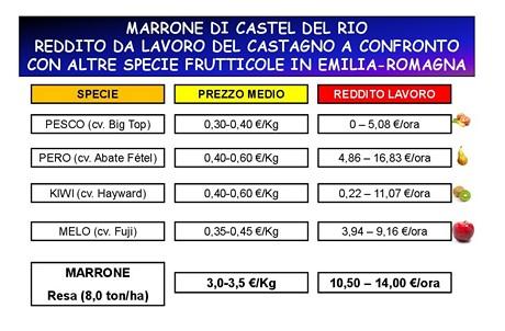 Ecco quanto costa un impianto specializzato di castagne