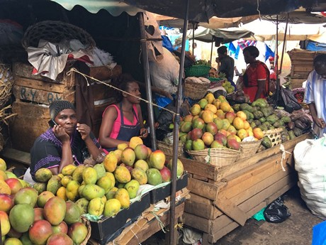 Discovering Tanzanian businesses and supermarkets