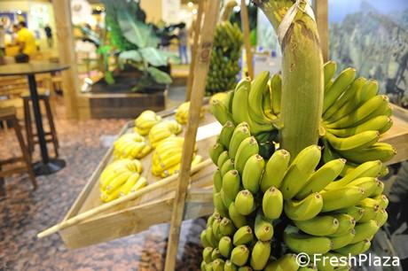 30 bananen per dag